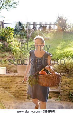 Femme mature jardinage, marche avec panier de légumes frais Banque D'Images