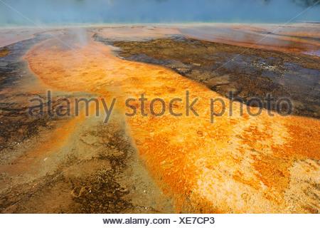 Sortie de l'Excelsior Geyser dans la rivière Firehole, Midway Geyser Basin, coloré de bactéries thermophiles, des geysers, des sources chaudes Banque D'Images