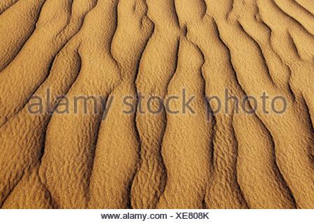 Namib-Naukluft National Park Namibie les habitudes des dunes de sable Namib-Naukluft National Park Banque D'Images