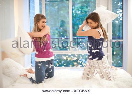 Bataille d'oreillers Banque D'Images