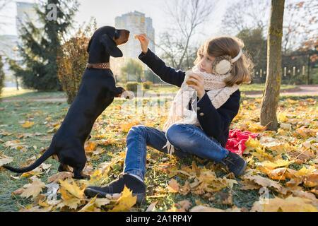 Ragazza bambino che gioca con il cane bassotto in autunno soleggiato parco, foglia caduta ora d'oro Foto Stock