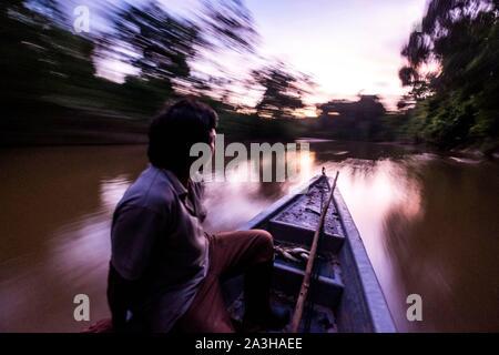 Ecuador, Tena, immersione esperienza di vita con la Waoranis del Rio Nushino, canoa motorizzato al crepuscolo