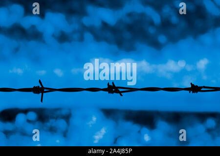 Filo spinato stagliano contro uno sfondo blu Foto Stock