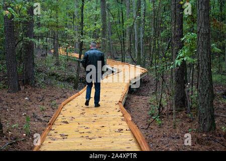 Un anziano uomo prende il suo cane per una passeggiata attraverso un bosco in Alabama.