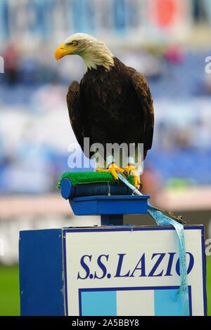 Olimpia ( Lazio ) durante la SS Lazio vs Atalanta, Roma, Italia, 19 ott 2019, Calcio Calcio italiano di Serie A del campionato Gli uomini Foto Stock