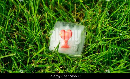Rosso di gomma elastica cuore congelato in un cubo di ghiaccio in fusione di Sun Foto Stock