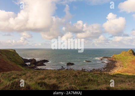Giant's Causeway pomeriggio vista, Irlanda del Nord, Regno Unito