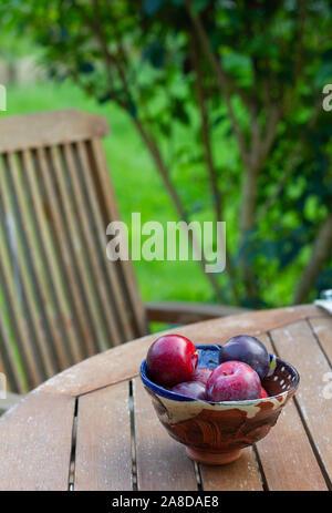 Close-up di rosso scuro e viola le prugne in una ceramica artigianale ciotola su un tavolo da giardino con ricca di verde lussureggiante giardino in soft-focus in background