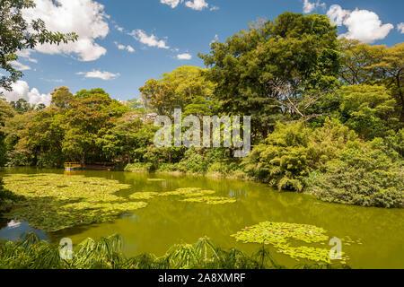 I giardini botanici di Medellin, Colombia. Foto Stock