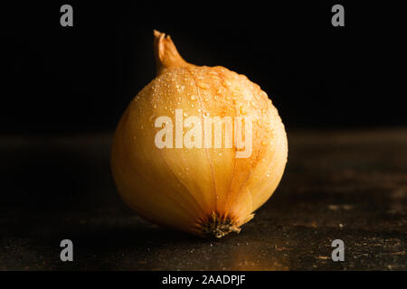 Di piccole dimensioni e di colore bianco cipolle francese su sfondo scuro