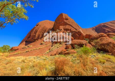 Centrale di paesaggio australiano con la macchia mediterranea lungo la passeggiata Lungkata, Ayers Rock in Uluru-Kata Tjuta National Park, UNESCO, Australia Pacific
