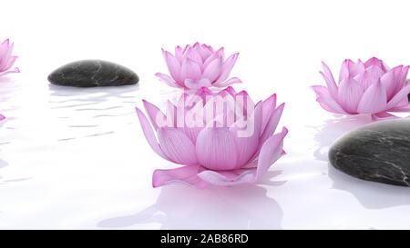 Rendering 3D illustrazione spa - fiori di loto e pietre Foto Stock