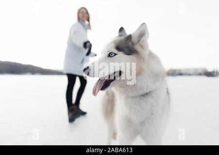 Felice giovane ragazza che gioca con siberian husky cane in winter park. Essi a piedi su un lago ghiacciato Foto Stock