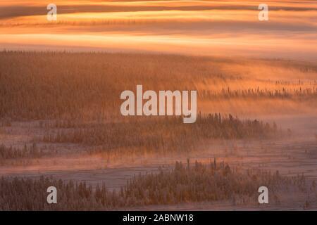 Landschaft im Gegenlicht, Schwedisch-Lappland, Skandinavien