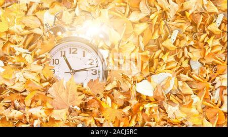 Orologio tempo caduto in autunno e inverno foglie gialle in vista superiore, la luce solare per l'inverno sfondo delle vendite Foto Stock