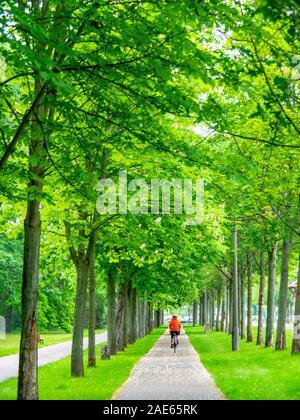 Cicloturismo bicicletta a cavallo sulla pista ciclabile Elbe a Elbauenpark Magdeburg Sassonia-Anhalt Germania