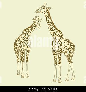 Due giraffe. Illustrazione Vettoriale. Foto Stock