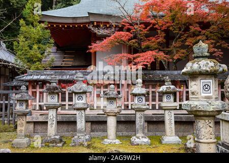 NARA, Giappone -20 novembre 2019: Tamukeyama Hachiman Santuario è un santuario shintoista dedicato al kami Hachiman. È stato stabilito in 749.