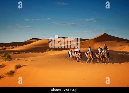 Deserto del Sahara cammelli trekking con berberi dromadaires avventura equitazione e berber escursione guida a Merzouga Dubai, Oman, Bahrain il Marocco o