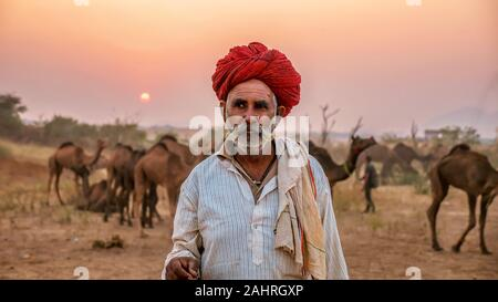 Pushkar, India - nov. 20, 2015. Un cammello di Rajasthani trader si trova di fronte la sua mandria di cammelli che è in vendita presso l'annuale del cammello di Pushkar Fair.