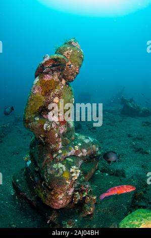 Statua del Buddha sul letto del mare con corallo rosso raggruppatore (Cephalopholis miniata, Famiglia Serranidae), giardino di corallo, sito di immersione, Seraya, Kubu distretto, Foto Stock