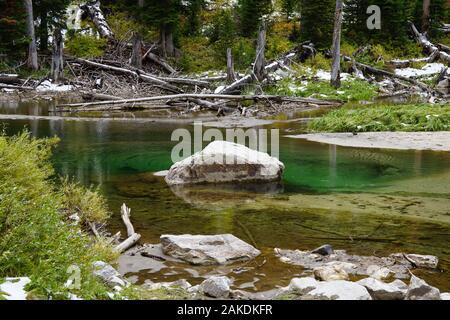 Una bella piscina color smeraldo è stata creata sul pavimento della foresta a partire dalla fusione di neve estiva. Foto Stock