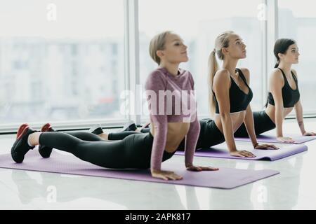 Giovani donne che praticano lo yoga. Fitness giovani donne meditando mentre fare la posa cobra in palestra.