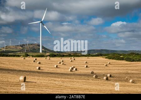 Turbine eoliche su campi nei pressi del paese di Tergu, nei pressi di Castelsardo, Anglona, provincia di Sassari, Sardegna, Italia