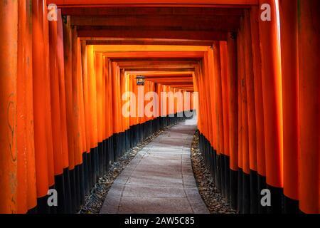 Migliaia di porte torii rosse lungo il passaggio pedonale nel tempio di fushimi inari taisha è Importante santuario Shinto e si trova a kyoto giappone. Giappone turismo, natura Foto Stock