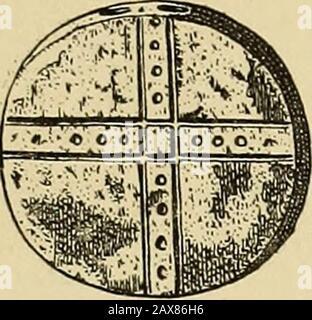 Esplorazione di un cimitero Munsee vicino a Montague, New Jersey . B. TIPICO OSSO AWLS TROVATO NEL TUMULO HEYE-PEPE - ESPLORAZIONE DI UN CIMITERO MUNSEE 33.