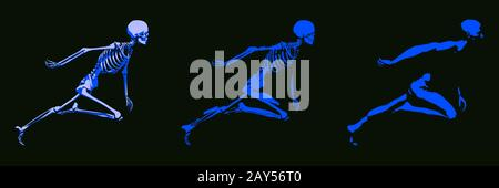 3D Concetto di Essere Umano corpo maschio e lo scheletro Foto Stock