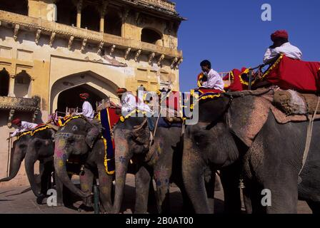 INDIA, RAJASTHAN, JAIPUR, FORTE AMBRATO, ELEFANTI E MAHOUTS Foto Stock