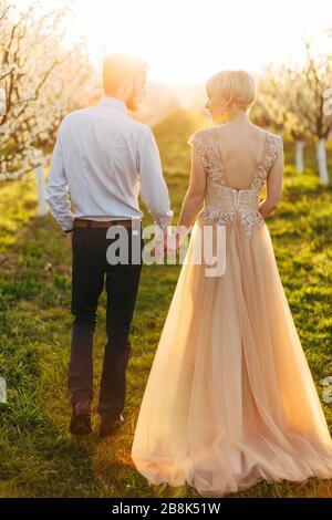 Indietro ritratto a lunghezza intera di lusso coppia felice di matrimonio tenendo le mani e camminare, splendida sposa in abito rosa, tenero momento romantico in primavera Foto Stock