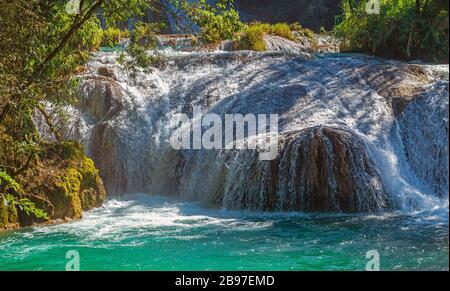 Primo piano di una cascata delle cascate di Agua Azul nella foresta pluviale di Chiapas, Palenque, Messico.