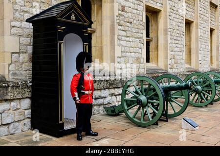 Una Guardia reale e un piccolo cannone all'interno della Torre di Londra, in Inghilterra Foto Stock