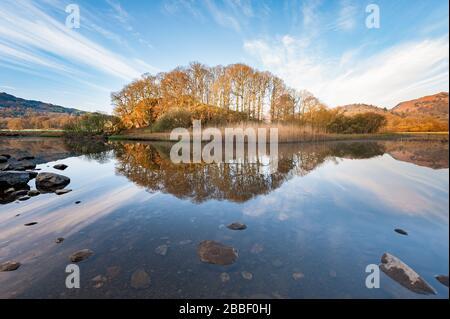 Tranquillo bosco e colline paesaggio a Elter acqua un piccolo lago / tarn vicino Elterwater in Great Langdale nel Distretto inglese dei Laghi, Cumbria Foto Stock