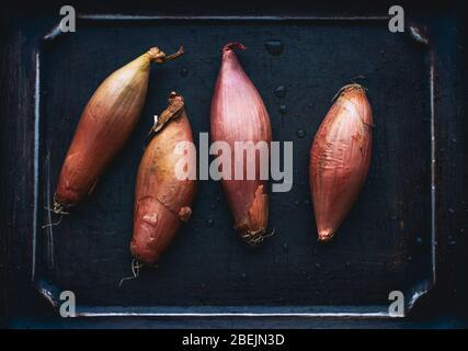 Scalogni francesi crudi su una base metallica vegetale sano