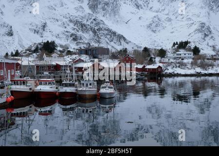 Atmosfera tranquilla nel porto situato nel piccolo villaggio di pescatori Ballstad. Situato nel cuore delle isole Lofoten, Norvegia settentrionale. Stagione di pesca tradizionale