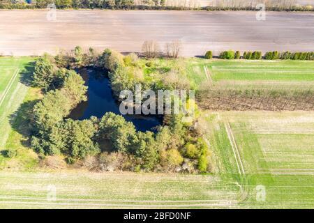 Piccolo stagno su terreno coltivato, circondato da boccole, vicino a Celle, Germania Foto Stock