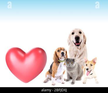 Animali carini con cuore grande su sfondo chiaro