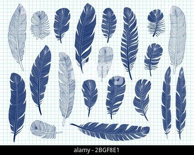 Penna a sfera disegno uccello piume grande set su sfondo notebook. Disegno di piume d'uccello, eleganza di pennino, illustrazione di schizzo Foto Stock