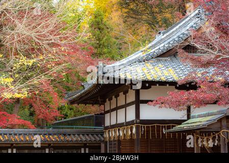 Tamukeyama Hachimangu santuario a Nara Giappone.