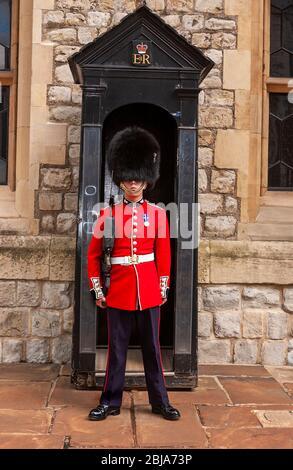 Guardsman in pelle di portico in piedi in servizio fuori della sua scatola di sentry in servizio alla Torre di Londra (UNESCO) un palazzo reale storico, Londra, Inghilterra, Regno Unito Foto Stock
