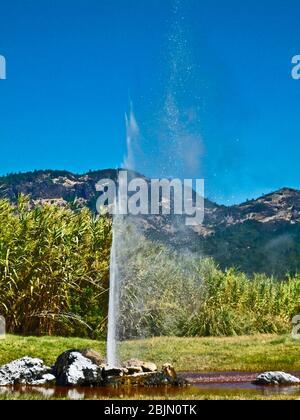 Old Faithful Geyser Calistoga, California. Eruzione. Il Geyser erutta da queste rocce al centro di uno stagno. Situato nella Napa Valley The