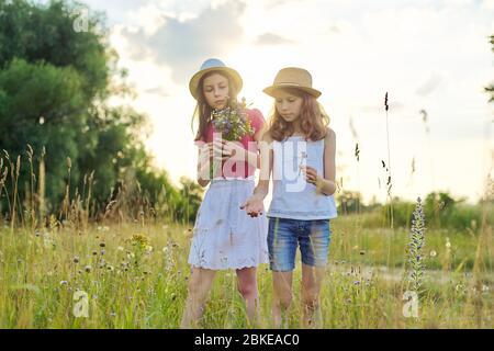 Due belle ragazze bambini lacrime fiori selvatici camminare in prato soleggiato Foto Stock
