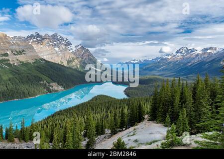 Peyto Lake nel Parco Nazionale di Banff, Canada Foto Stock