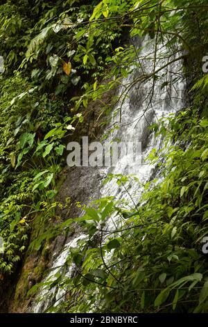 Vista ravvicinata delle acque fresche, rumorose e intense della cascata Tumpak Sewu, a Giava Est, Indonesia.