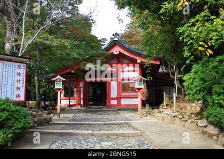 Tamukeyama Santuario di Hachimangu, Nara, Giappone
