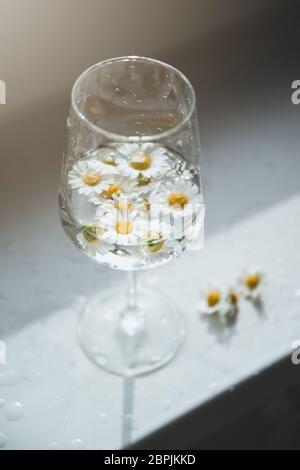 Wineglass con fiori di camomila e ombre dure.