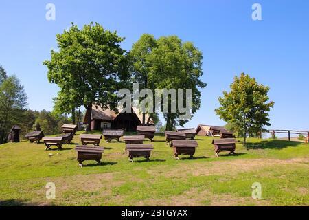 Vari tradizionali, alveari in legno in un campo. Presso l'antico Museo dell'apicoltura nel Parco Nazionale di Aukštaitija in Lituania. Foto Stock